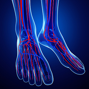 Ankle-Brachial Index and PAD